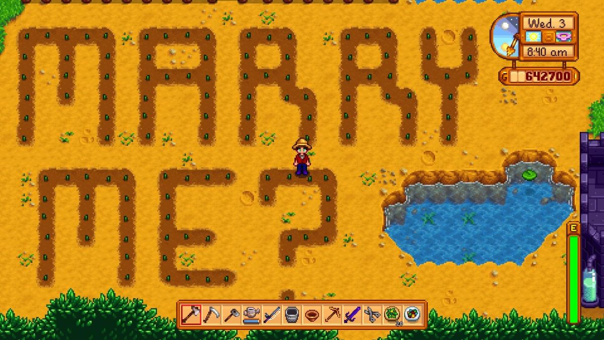 Meet the couple who got engaged in Stardew Valley