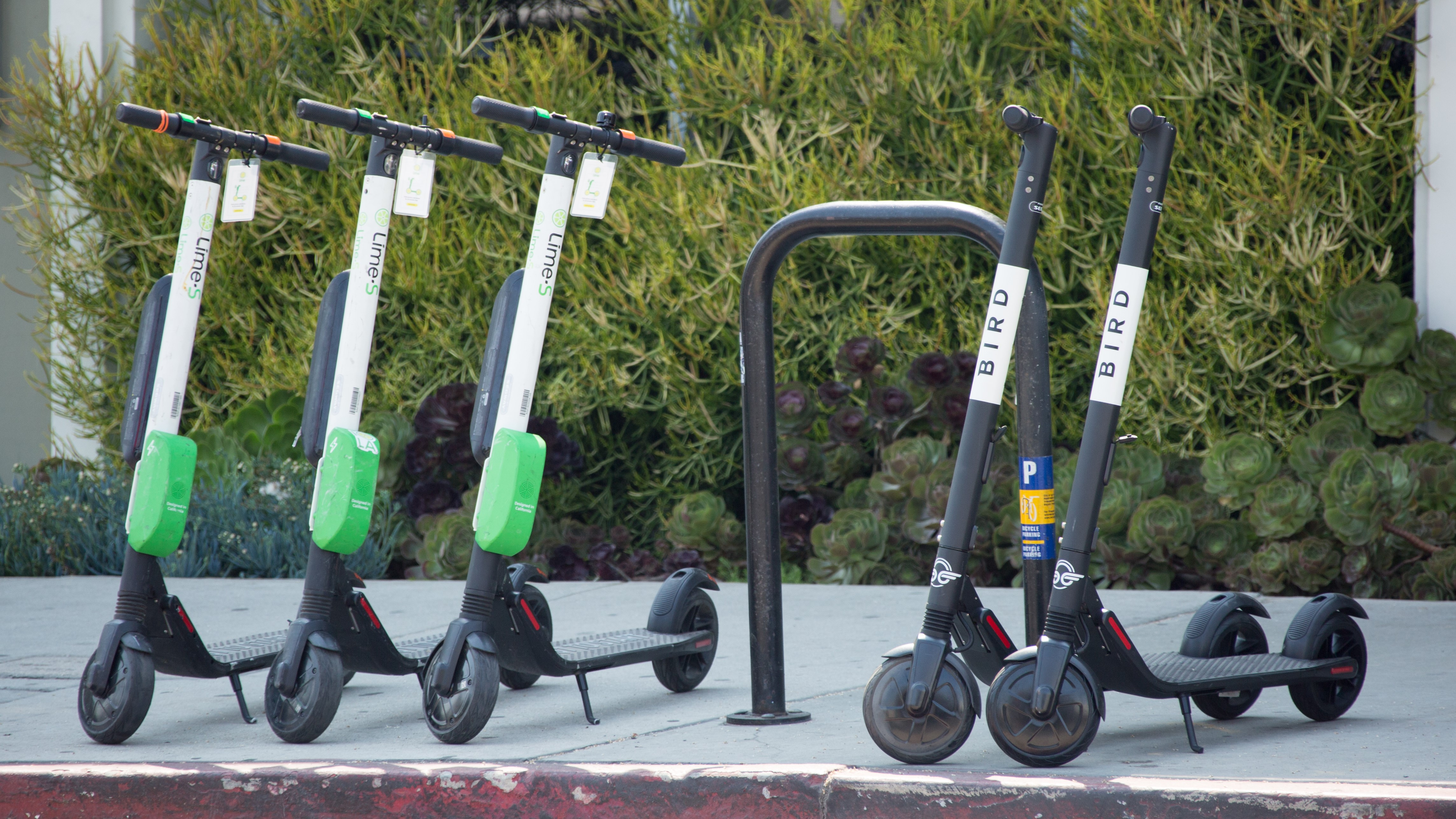 Bird and Lime electric scooters