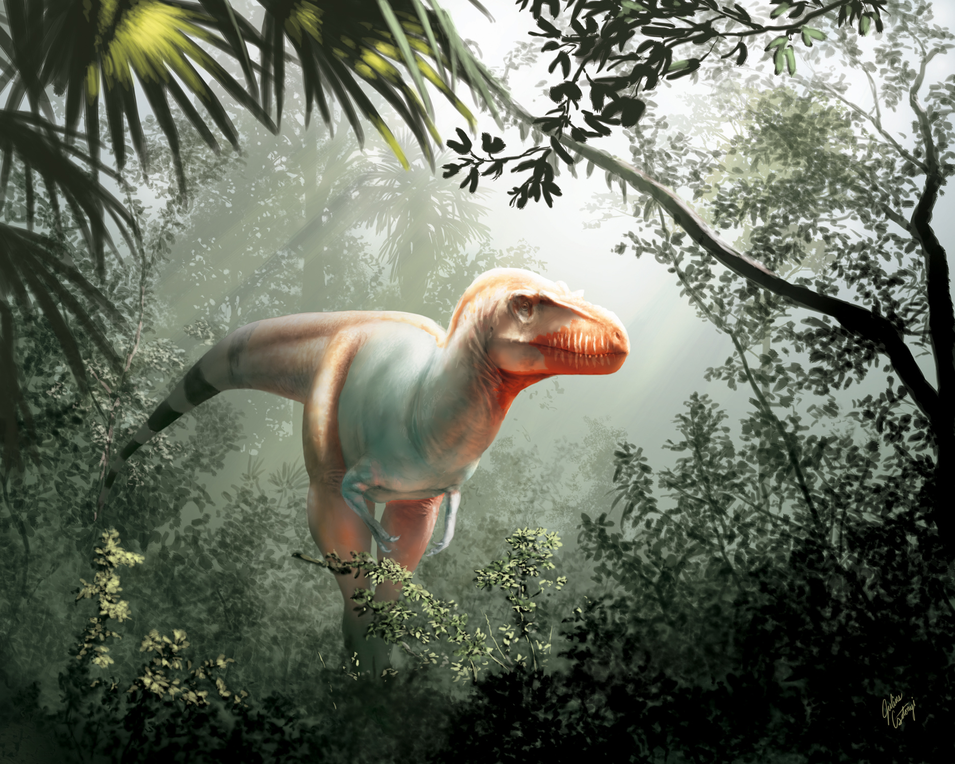 Reaper Of Death Newfound Cousin Of T Rex Discovered In Canada Live Science
