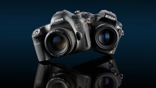 our pick of the best full frame dslrs from canon nikon pentax and sony