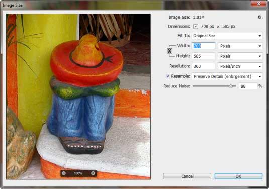 Adjusted Image size dialog box