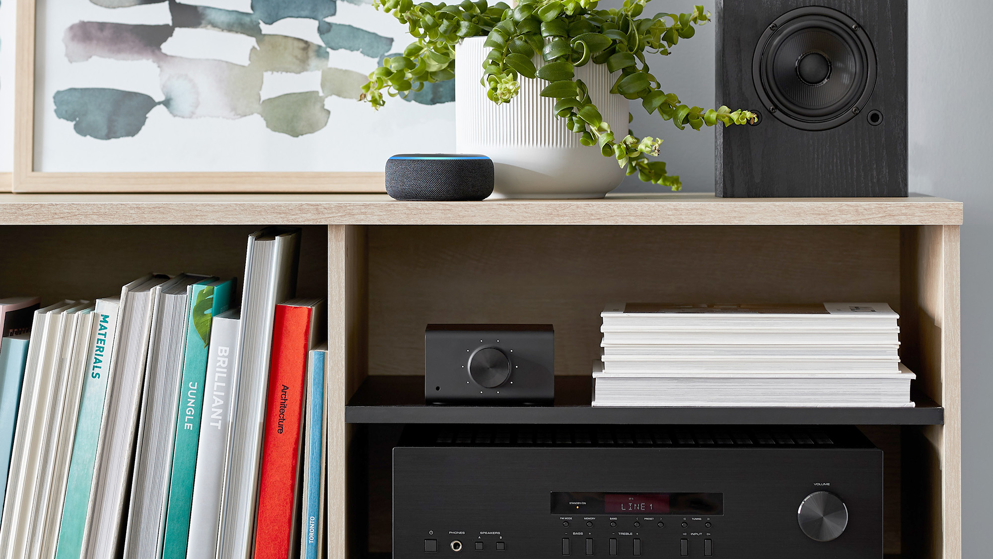 First Look: Amazon Echo Link and Amp could take over the audiophile market