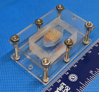 Scientists 3D-print human liver tissue in a lab, win top prizes in NASA challenge thumbnail
