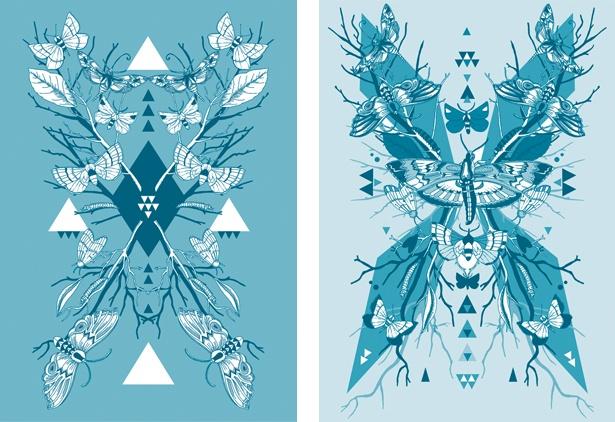 Lucy Joy - Moth Symmetry