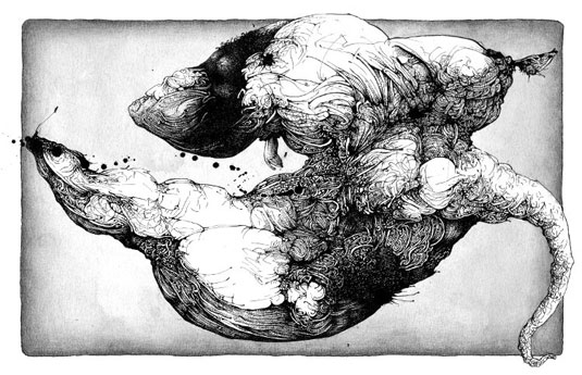 Ink drawings – Lisandro Demarchi