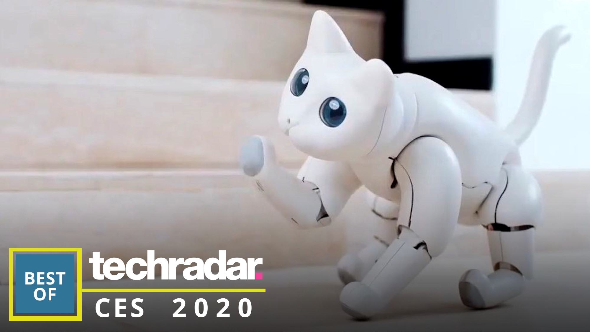 The best robots from CES 2020: the cute, the cuddly and the confusing