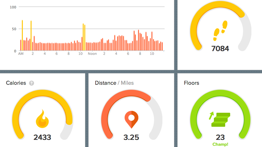 Fitbit Force dashboard