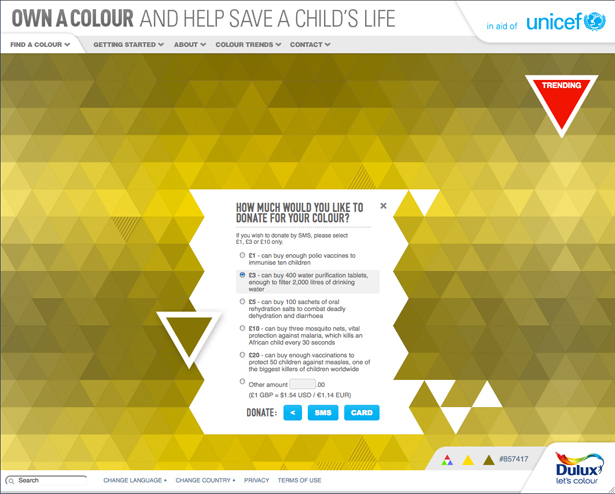 Once you've selected a colour, decide how much you want to donate.