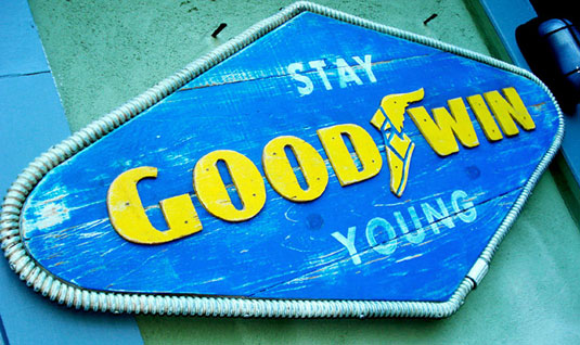 goodwin sign