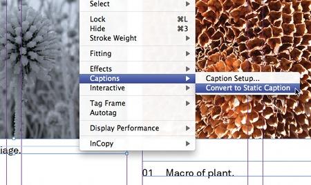caption convert static