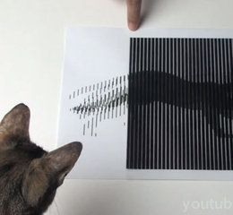 animated optical illusions template - amazing animated optical illusion creative bloq