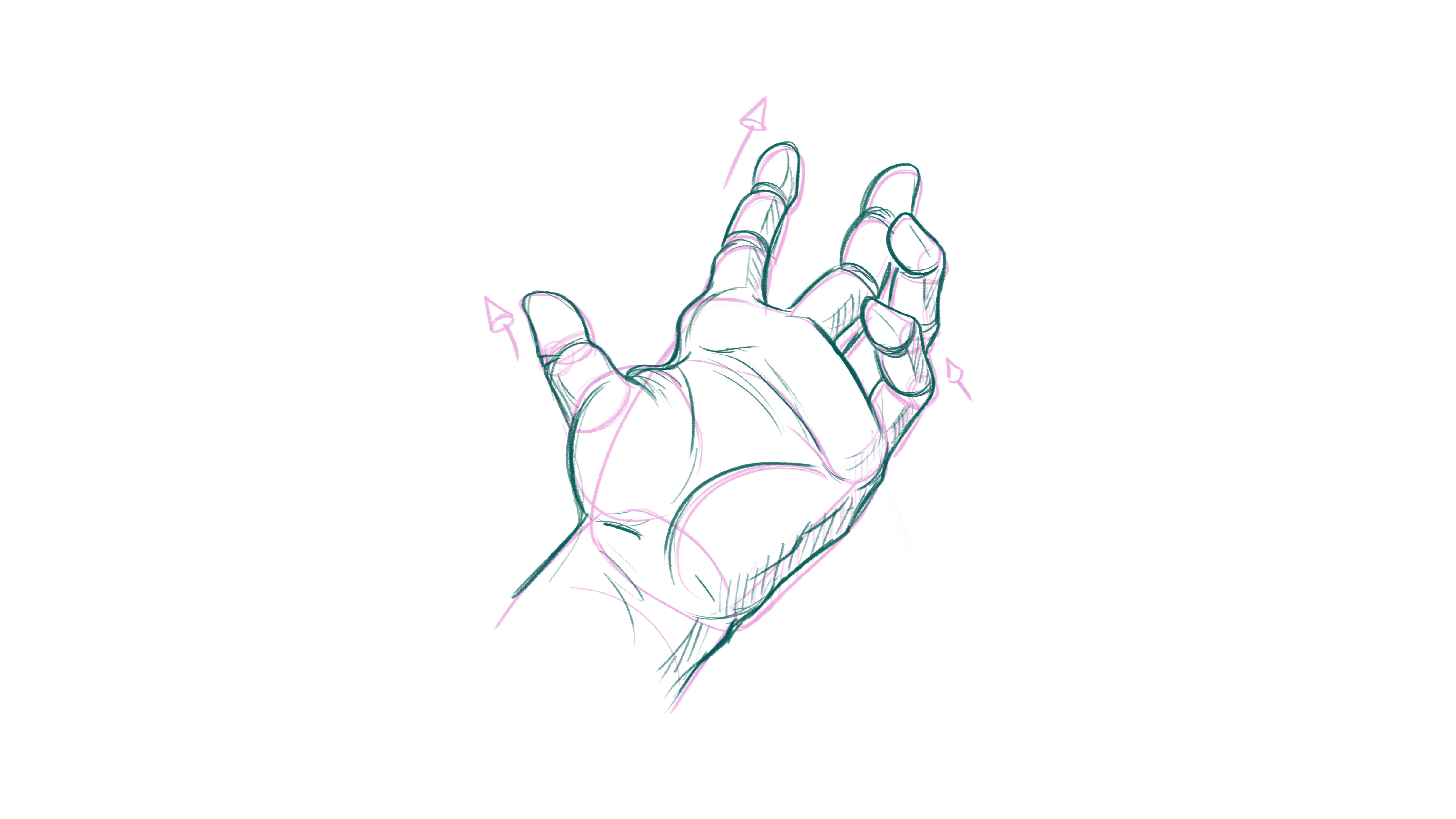 How to draw hands: begin to find gesture and forms