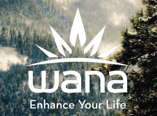 Cannabis branding: Wana Edibles