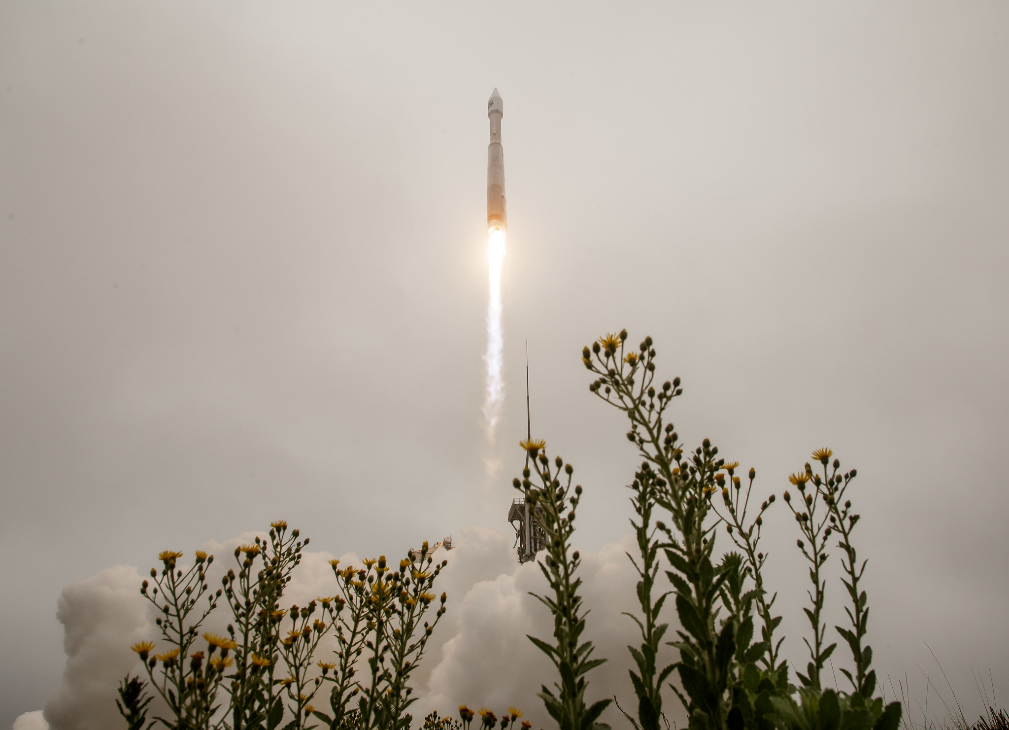 NASA launches powerful Landsat 9 satellite to monitor climate change, forest cover and more