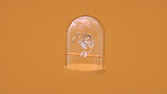 3D bird animation