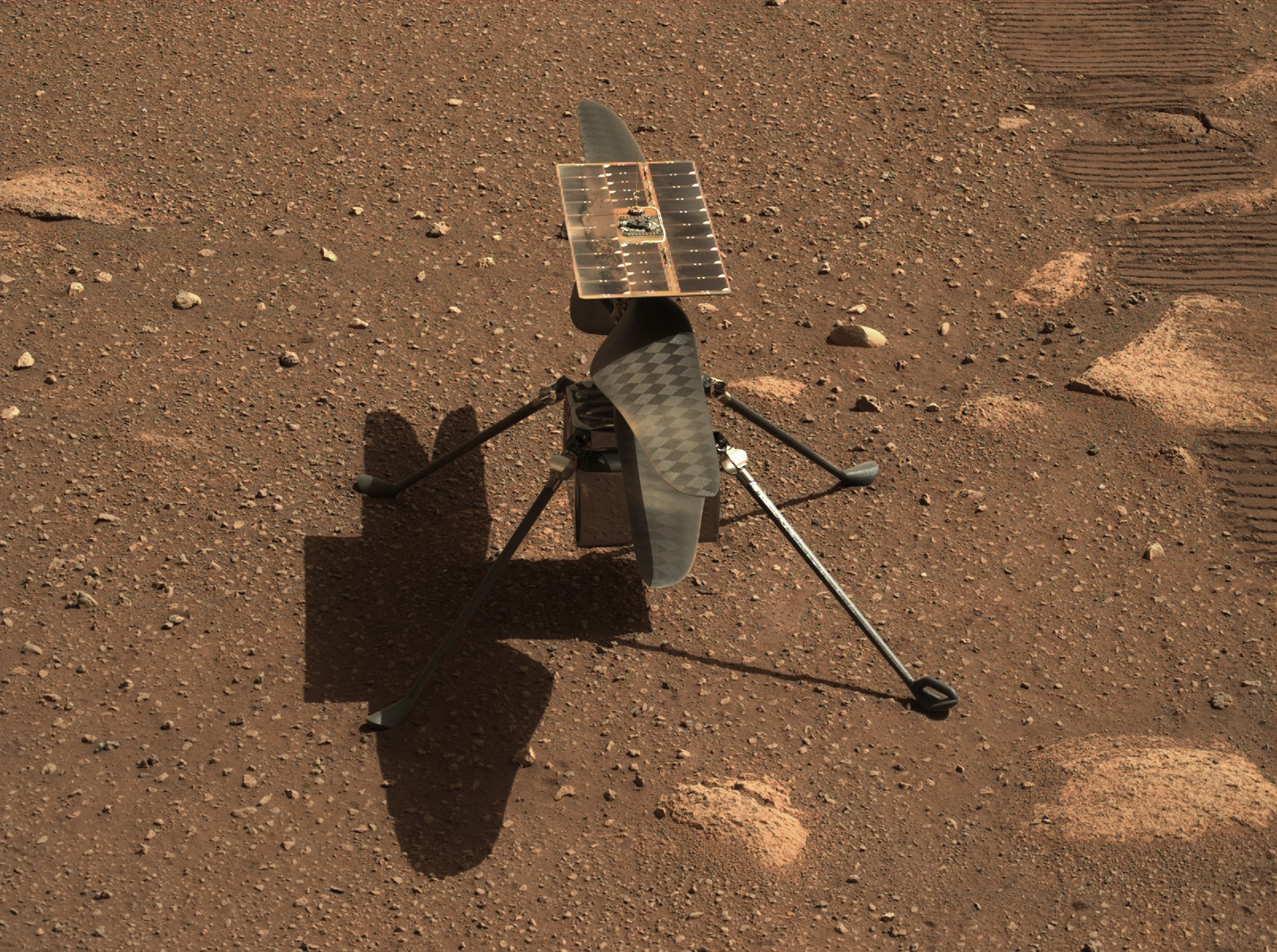 <p>NASA's Mars helicopter Ingenuity Will Not fly until next week at the First thumbnail