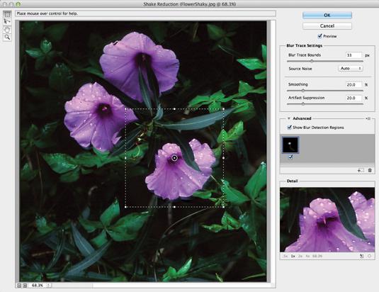 Photoshop CC: Camera shake reduction
