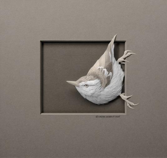 Calvin Nicholls Paper Art - bird