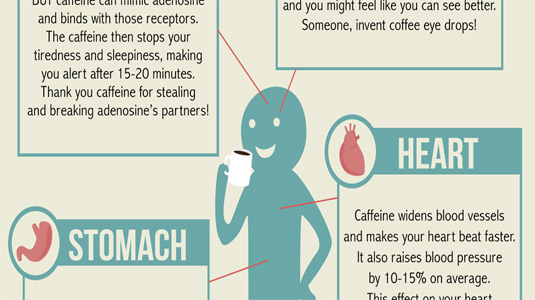 The best infographics - Coffee