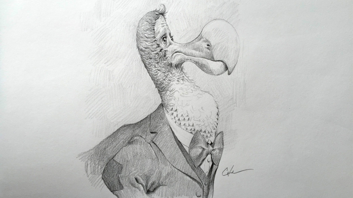 Pencil drawing techniques: Dodo