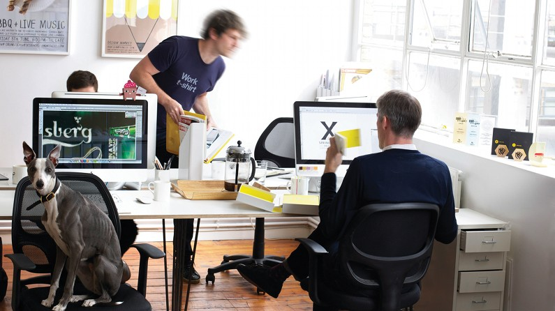 pro working environments