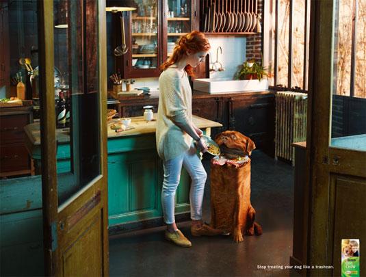 Print ads: Dog Chow