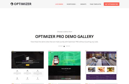 optimizer template