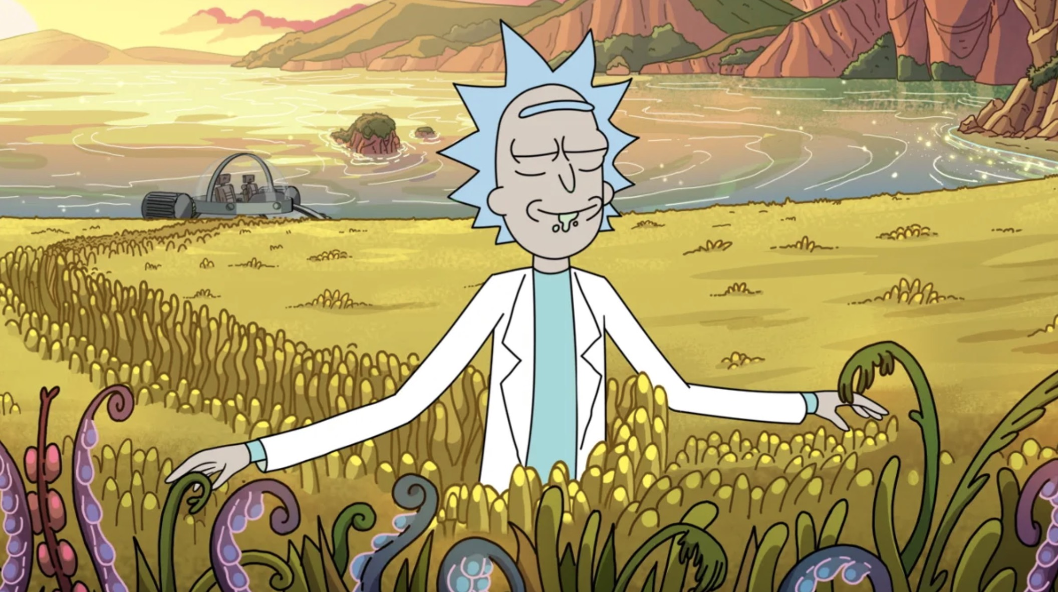 Rick and Morty season 4's final five episodes get a May release date