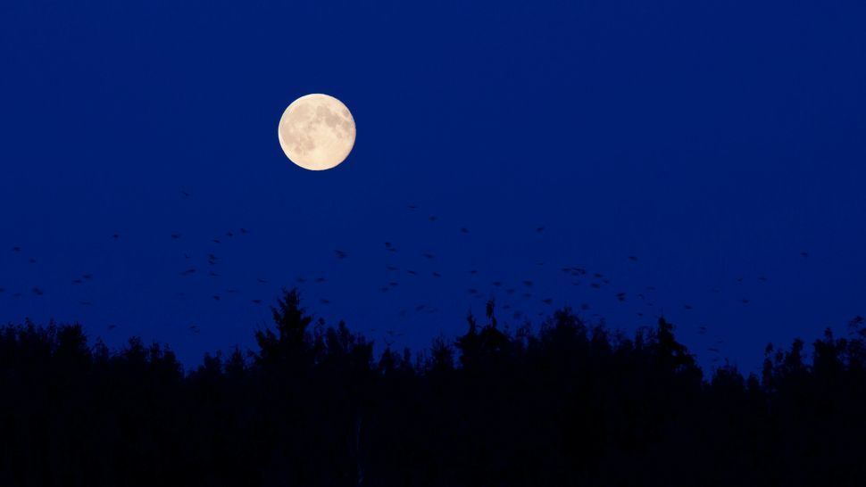 How to see October's full Hunter's Moon this Wednesday (Oct. 20)