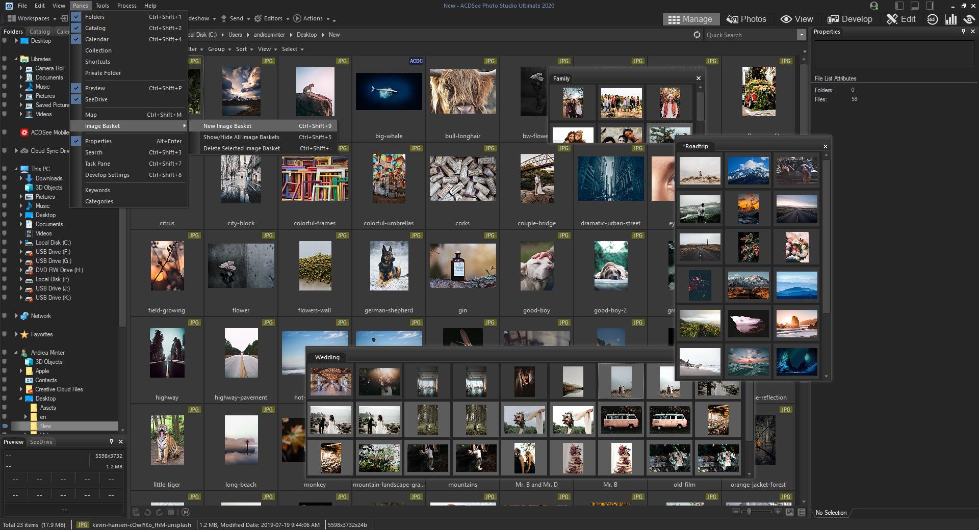 Resultado de imagen para ACDSee Photo Studio Home 2020