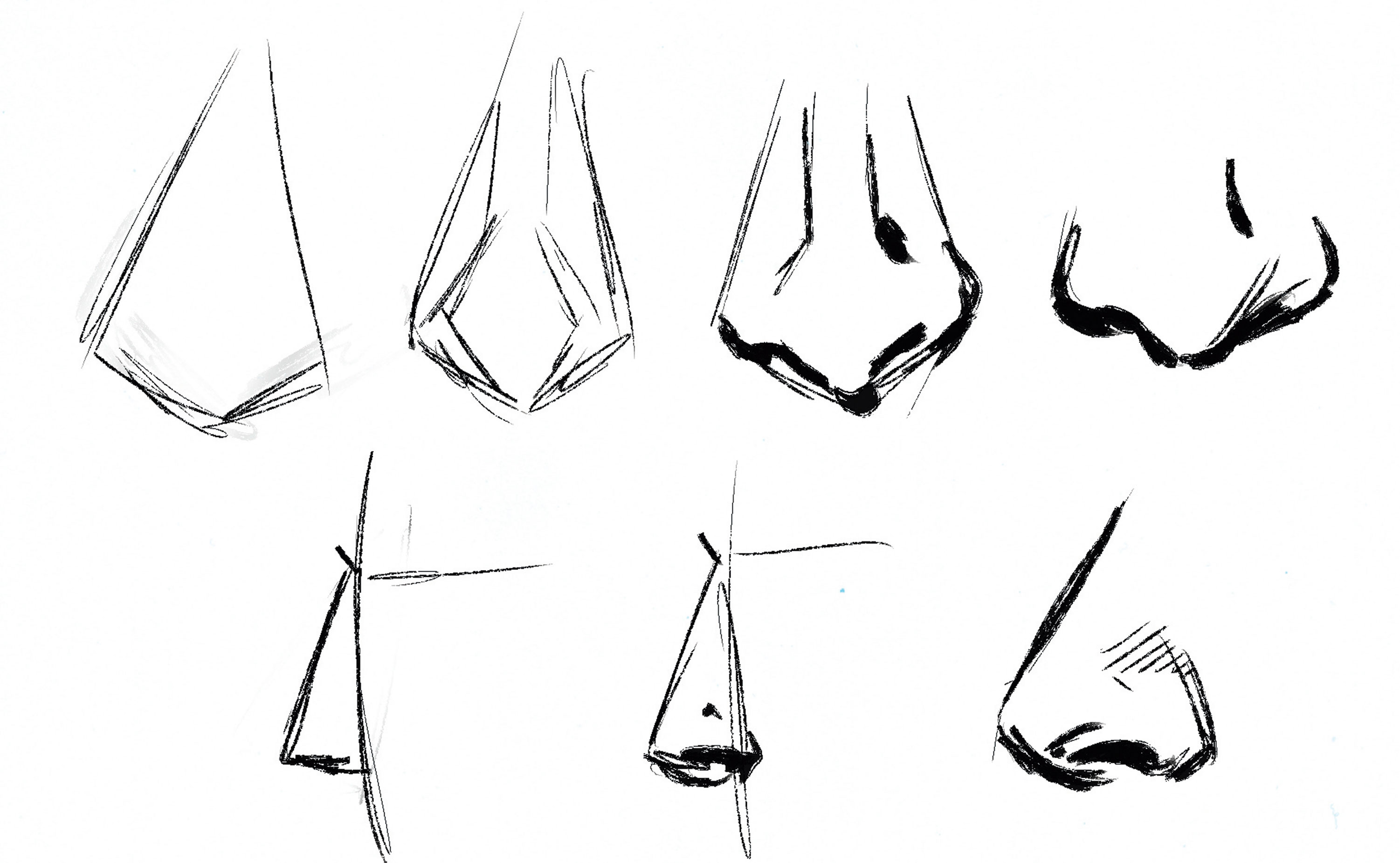 Several illustrations of noses