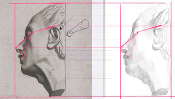 A drawing of a portrait profile with proportional diagrams overlaying it