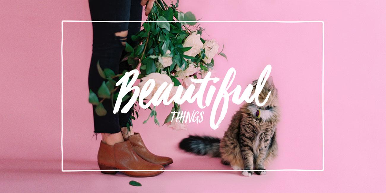 Pretty fonts: Viva Beautiful