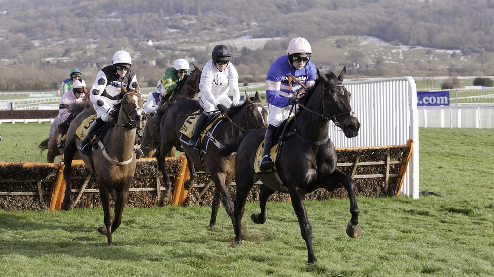 How to watch Cheltenham live: stream the 2019 horse racing festival online from anywhere