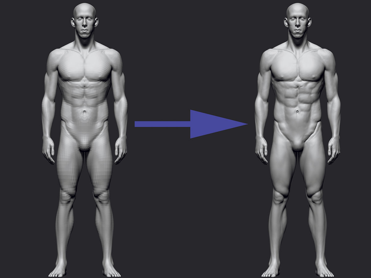 ZBrush tutorials: Sculpt realistic anatomy