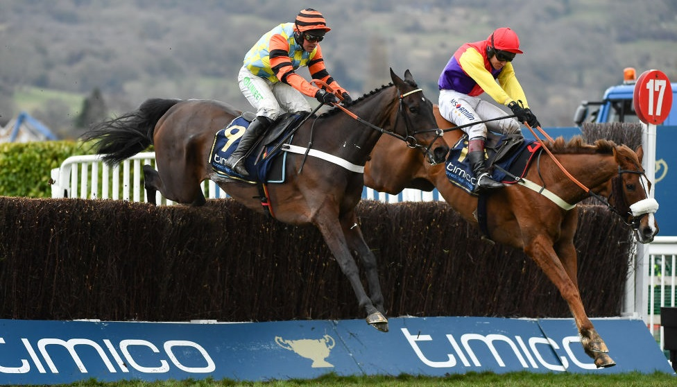 How to watch Cheltenham live: stream the Gold Cup 2019 online from anywhere