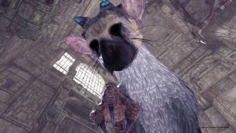 The Last Guardian VR Experience Revealed