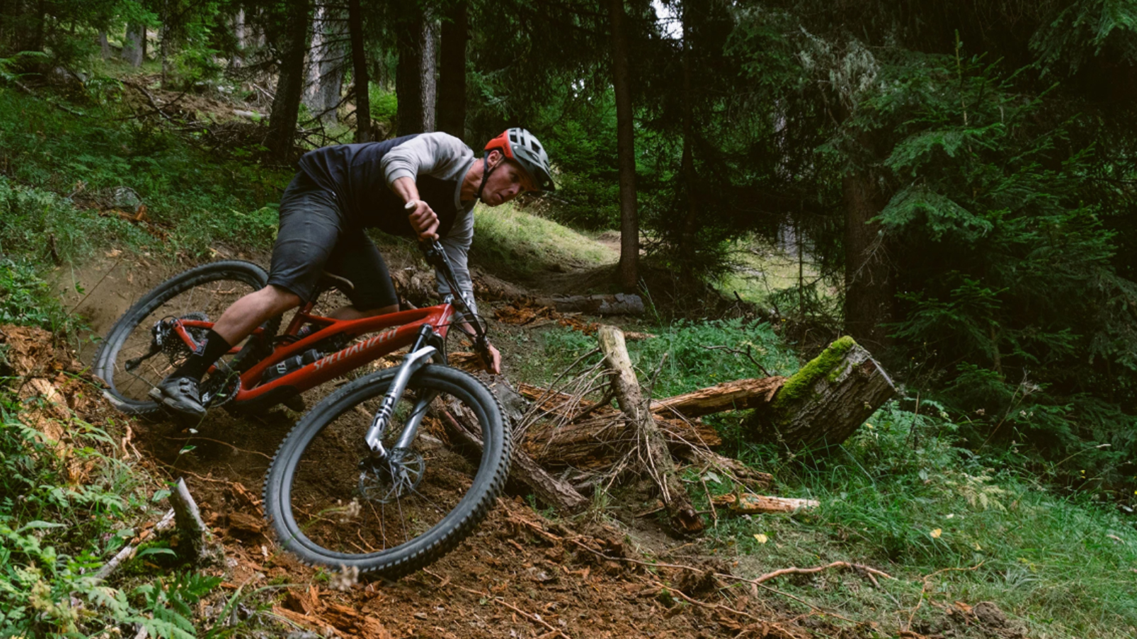 Mountain Bike - Reviews - cover