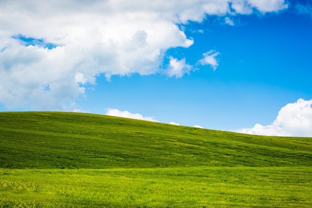 Windows XP Source Code Reportedly Leaked, Posted to 4chan (Update)