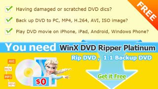 winx dvd ripper platinum manual