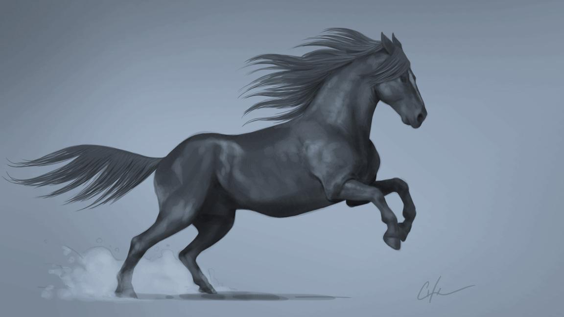 Drawing Pencil by Corina Olosutean | Horses, Horse painting  |Horse Art Drawings