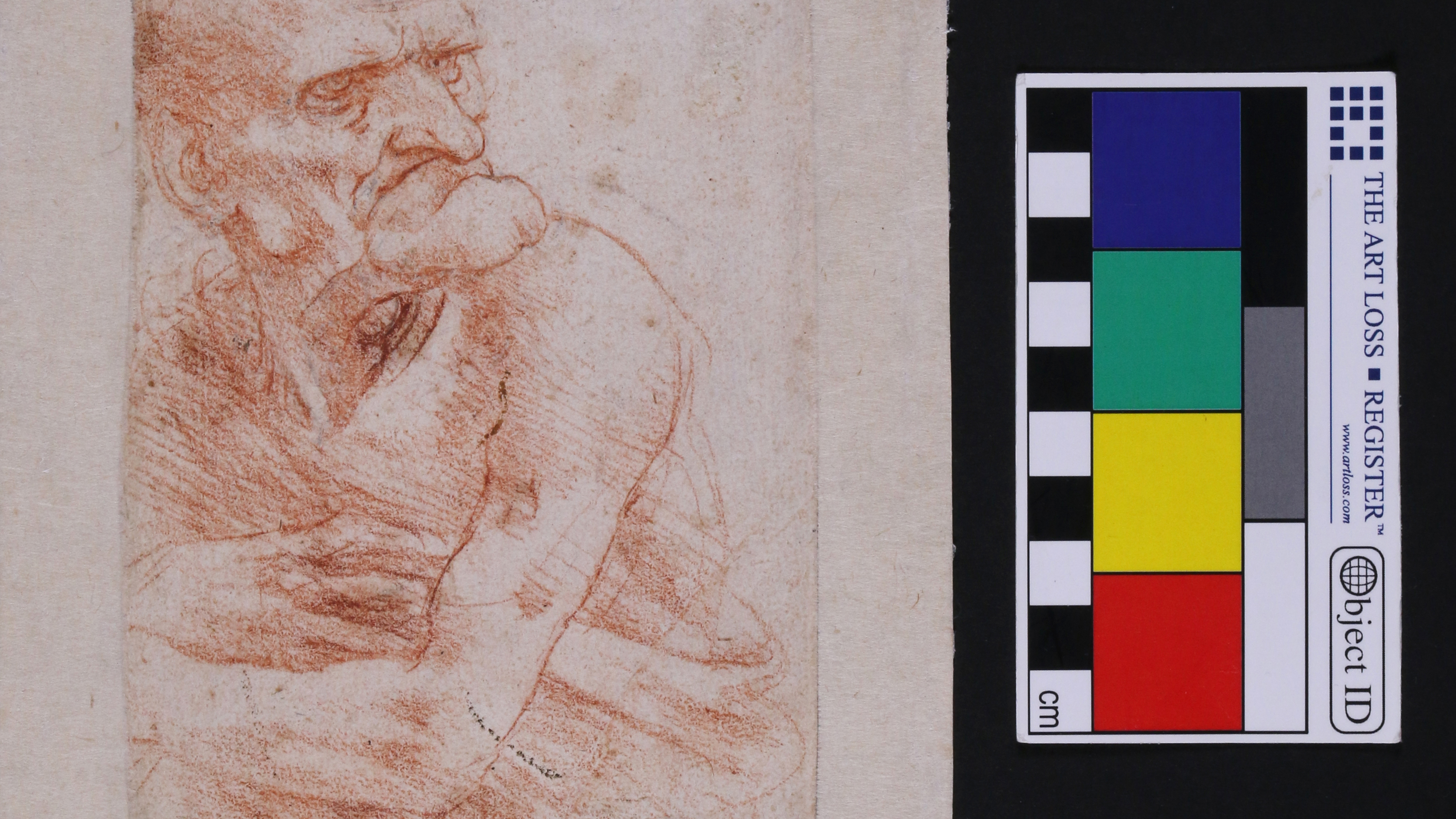 Hidden world of bacteria and fungi discovered on Leonardo da Vinci's drawings thumbnail