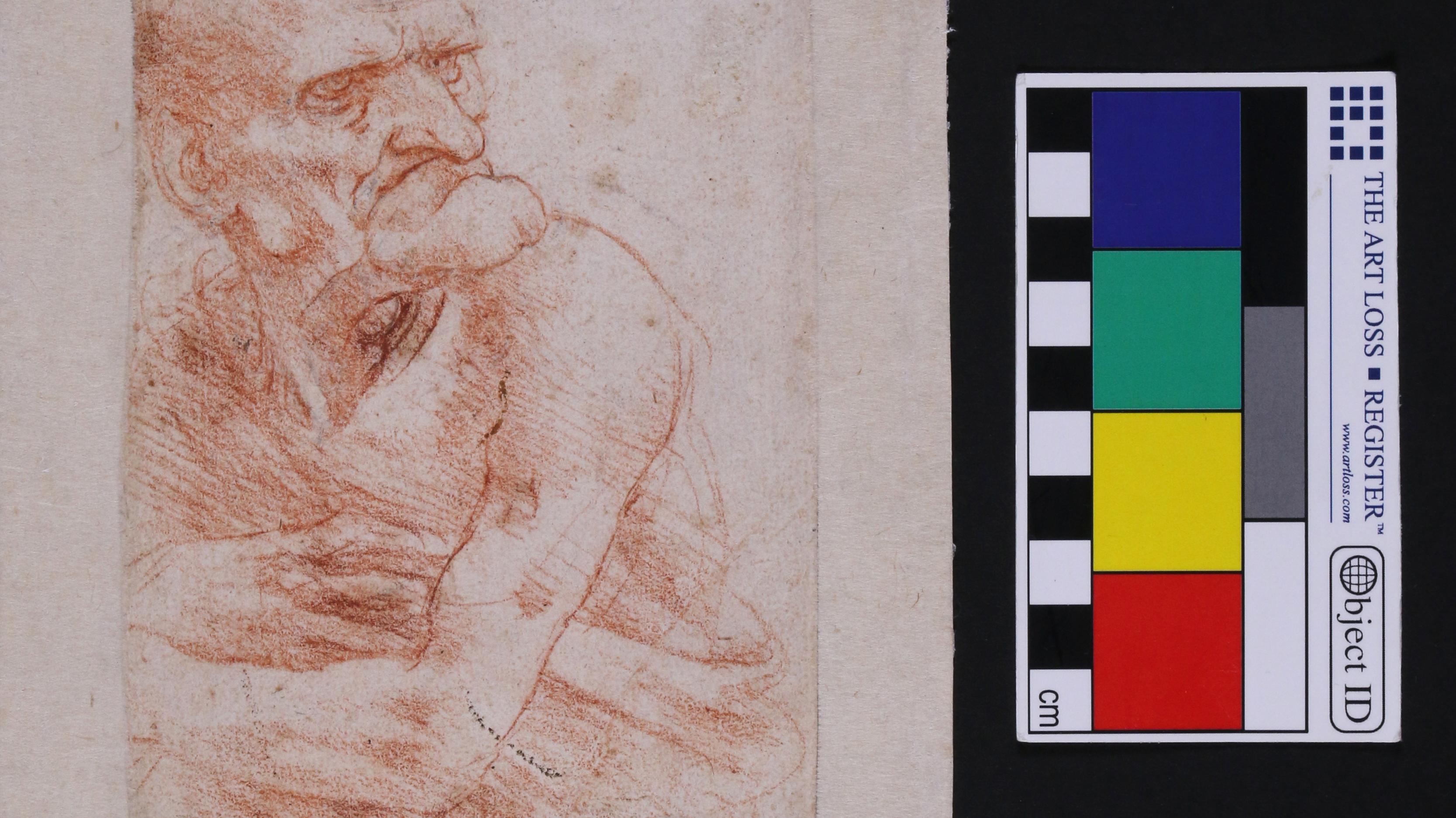 Hidden world of bacteria and fungi discovered on Leonardo da Vinci's drawings thumbnail