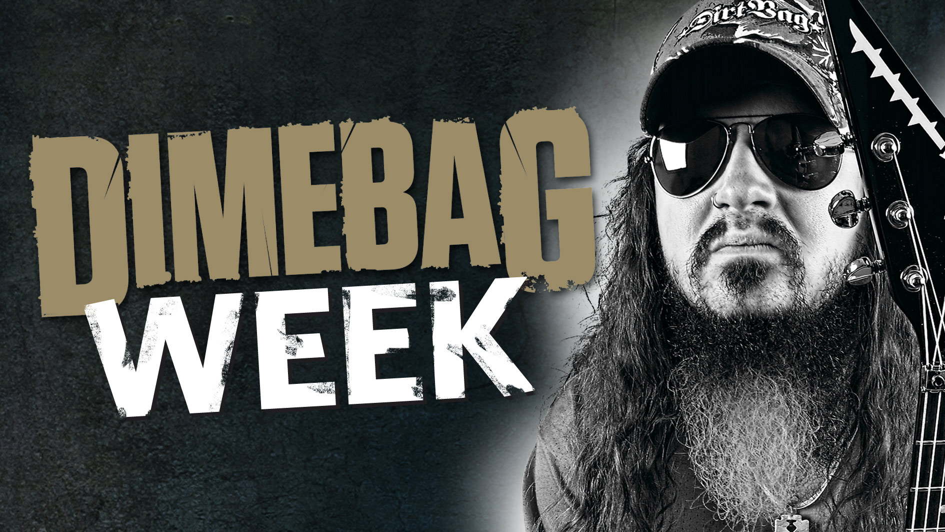 Dimebag week: A complete guide to Dimebag Darrell signature ... on