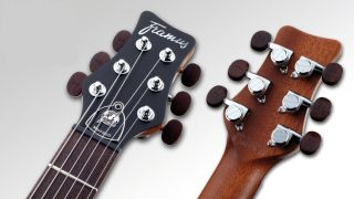 All German made Framus guitars will ship with these bad boys from now on