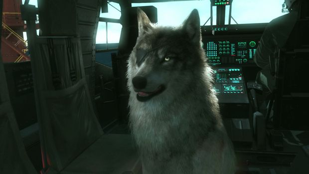 How to Get D-Dog as a Buddy in Metal Gear Solid 5: The Phantom Pain