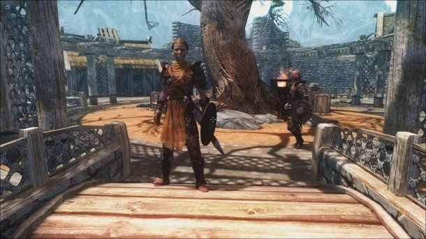 the best skyrim mods: diverse guards