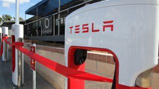 Tesla Port Macquarie