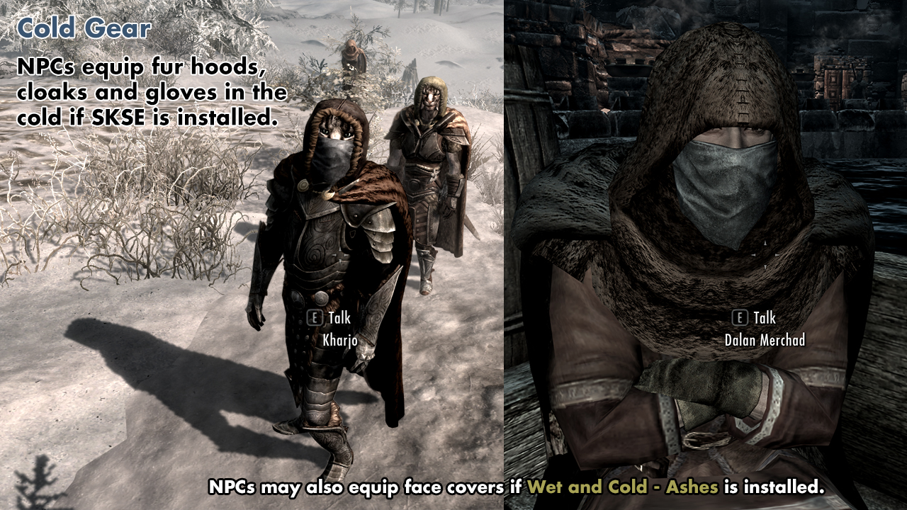 the best skyrim mods: wet and cold
