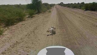 Google Maps donkey